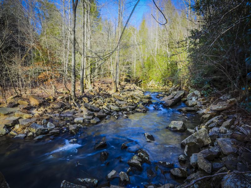 24 Acres Fronting Pristine Creek : Grandview : Rhea County : Tennessee