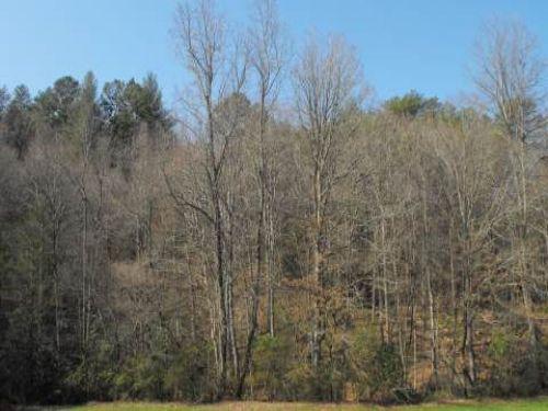 Creek Frontage : Blue Ridge : Fannin County : Georgia