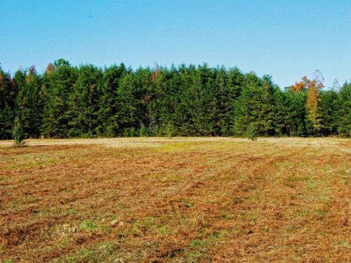 6.89 Acre Unrestricted Land : Landrum : Spartanburg County : South Carolina