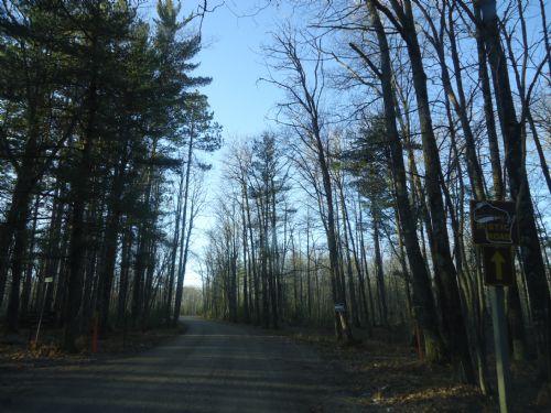 5.43ac Wilderness Estates Parcel : Minocqua : Oneida County : Wisconsin