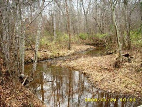 Ac273- Great Hunting Land : Wedowee : Randolph County : Alabama