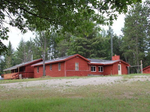 40 Acres Of Excellent Hunting : Onaway : Cheboygan County : Michigan