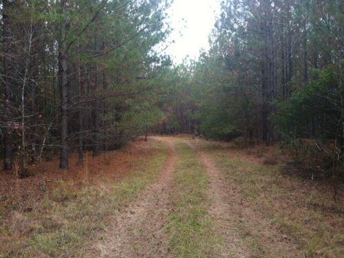 Diverse 75 Acres Close To Dublin : Wrightsville : Johnson County : Georgia