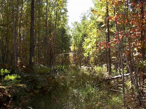 Tbd Hwy M-64, Mls# 1070315 : Silver City : Ontonagon County : Michigan
