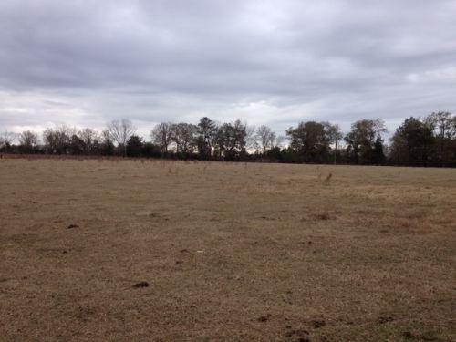 47 Acre Horse Farm : Swainsboro : Emanuel County : Georgia