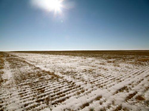 Cramer Trust Dry Farmland Auction : Haxtun : Logan County : Colorado