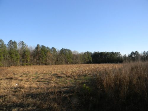 20+/- Acres Of Hunter's Heaven : Post Oak : Bullock County : Alabama