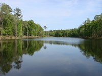 778 Acre Hunting Plantation W/ Lake : Ellaville : Schley County : Georgia