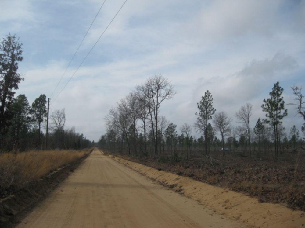 Bussey Road 50 Tract : Windsor : Aiken County : South Carolina