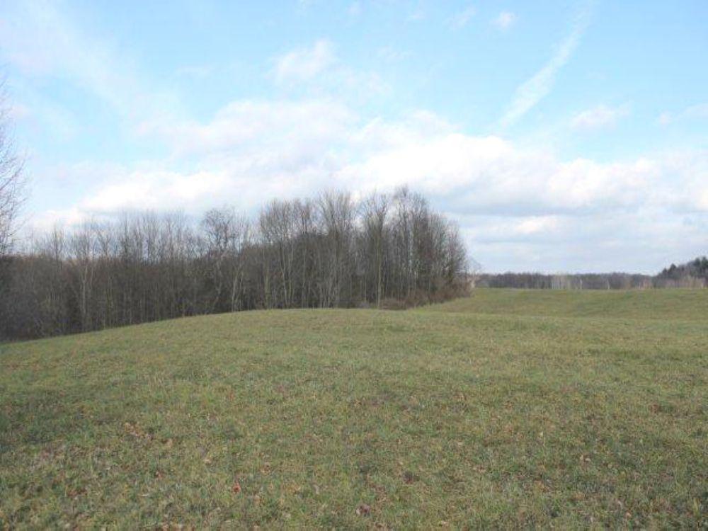 5 Acres Tug Hill Region Hunting : Camden : Oneida County : New York