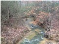 Bank Owned 51.45 +/- Acres $56,595