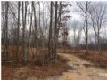 Bank Owned 53.88+/- Acres $59,268