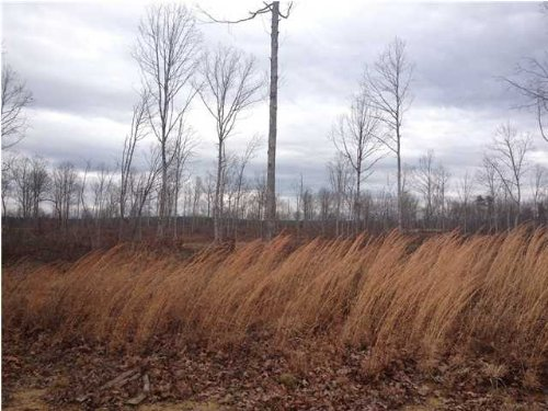 Bank Owned 53.82+/- Acres $59,202 : Tracy City : Grundy County : Tennessee