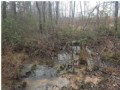 Bank Owned 51.33+/- Acres $56,683