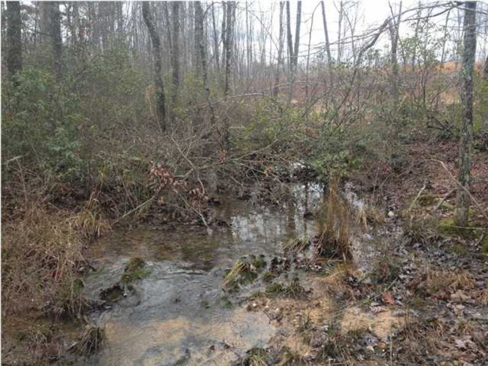 Bank Owned 51.33+/- Acres $56,683 : Tracy City : Grundy County : Tennessee