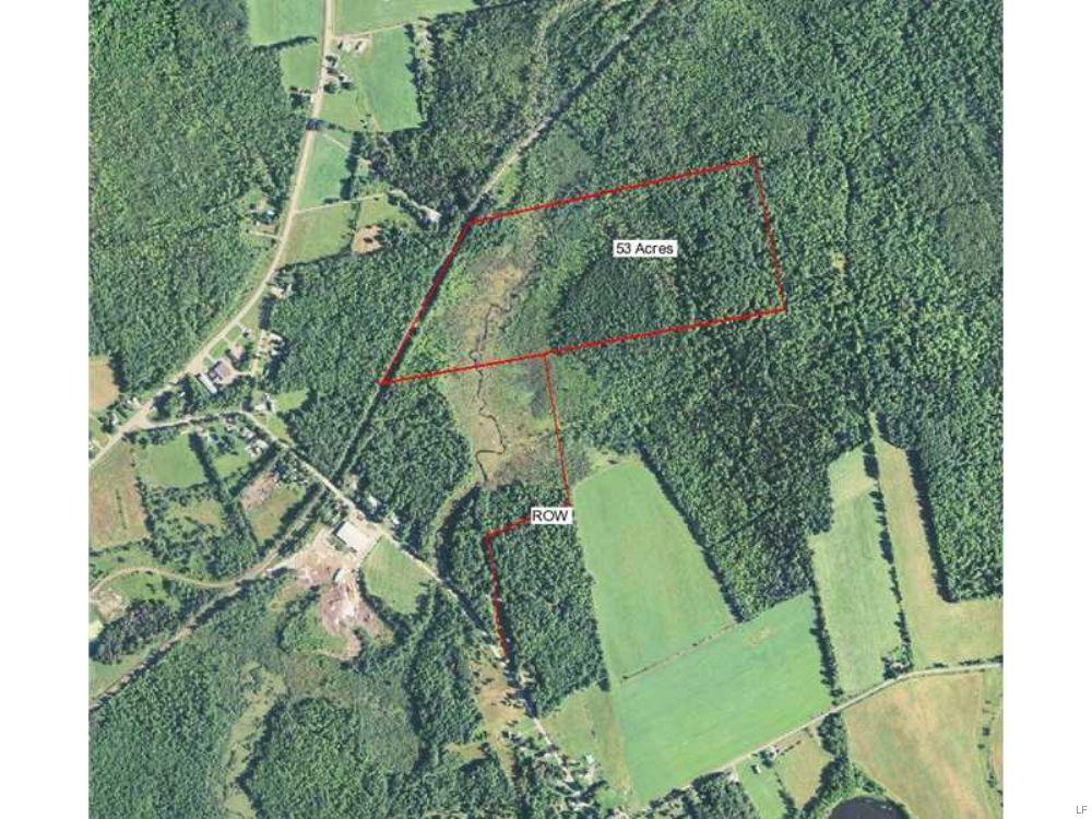 On Brackett Brook Hunting Parcel : Palmyra : Somerset County : Maine