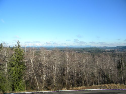 Big Property At A Small Price : Montesano : Grays Harbor County : Washington