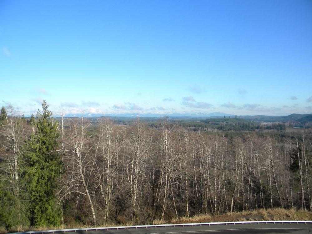 Big Property At A Small Price : Montesano : Grays Harbor County : Washington
