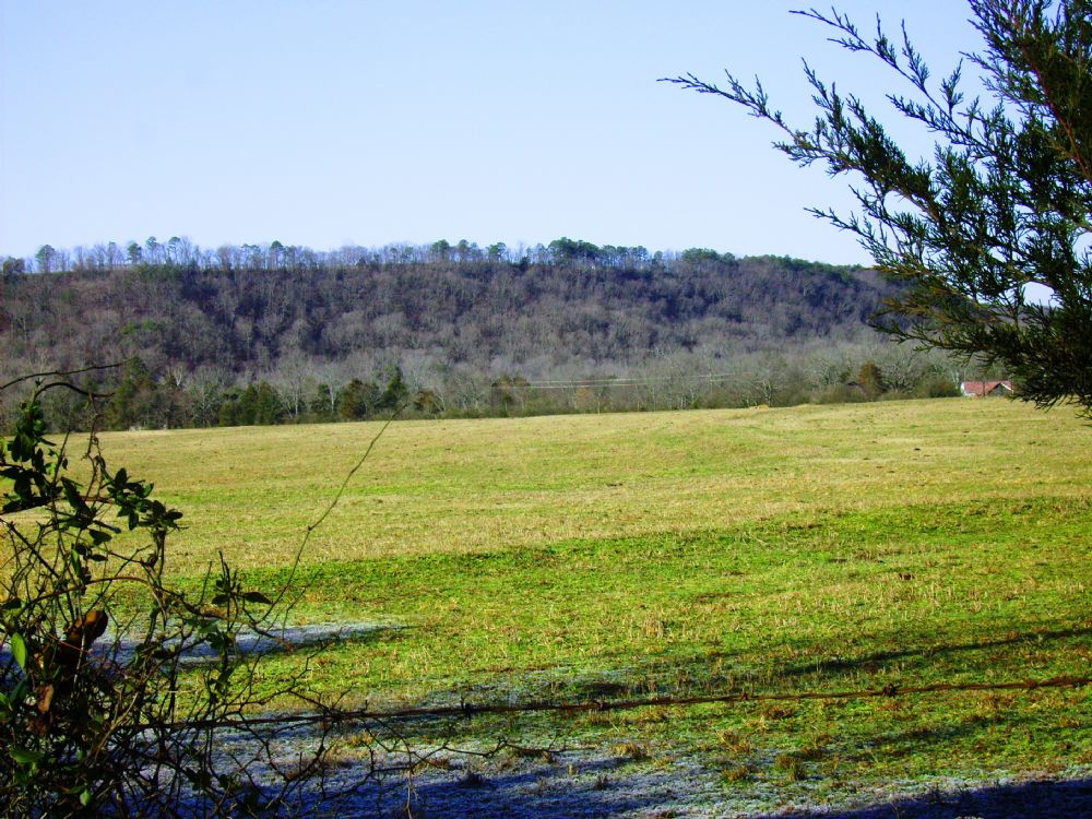 269 Acre Cattle / Hunting Property : Clarksville : Johnson County : Arkansas
