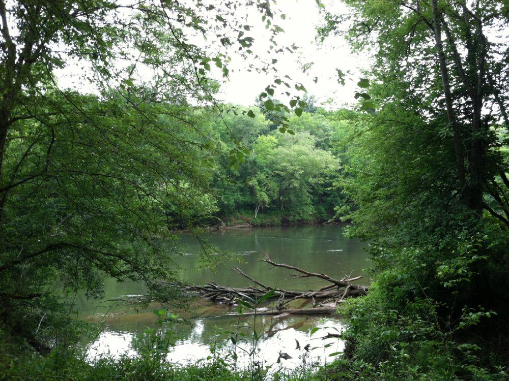 Etowah River 8.5 Acre Lot : Kingston : Bartow County : Georgia