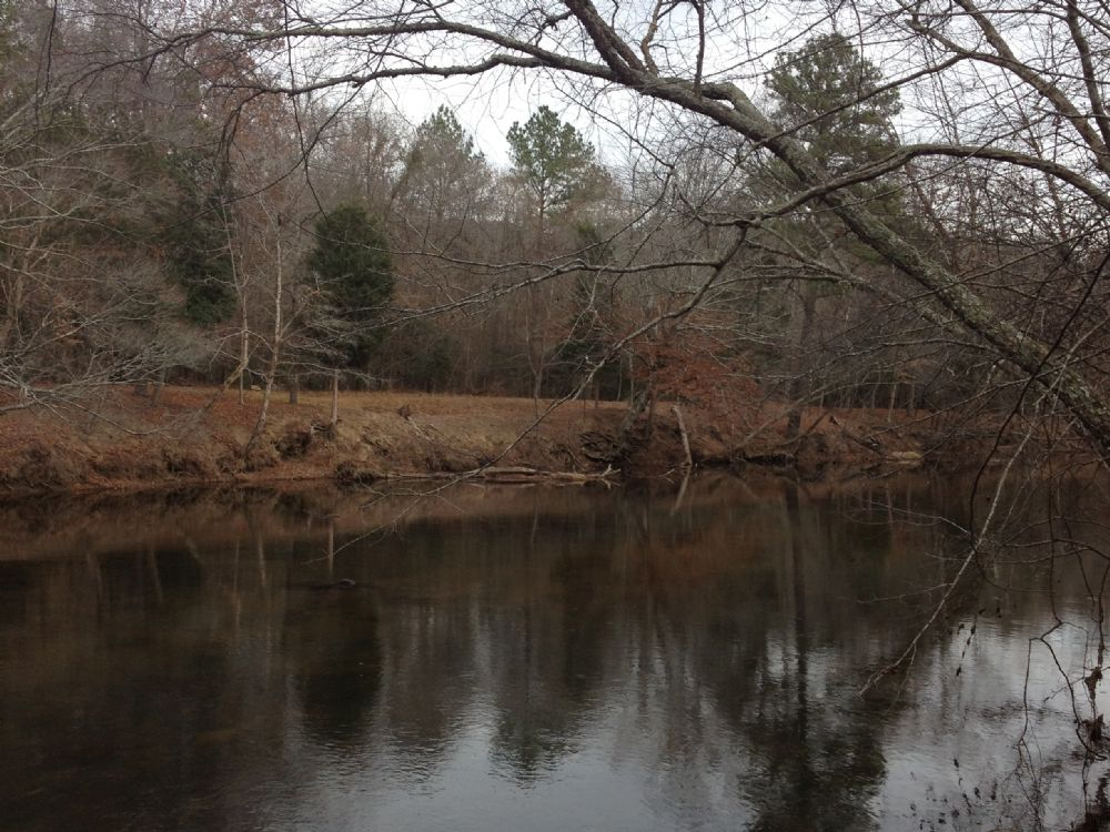 355 Acres On Nottoway River : Emporia : Greensville County : Virginia