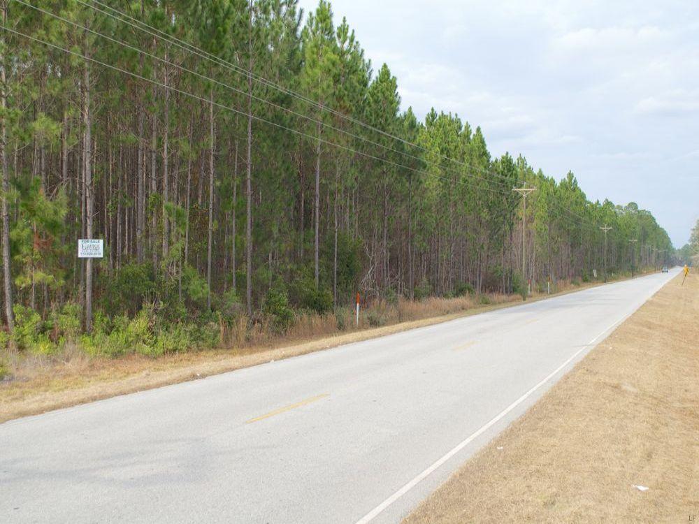 Wood Lake Drive Track : Homerville : Clinch County : Georgia