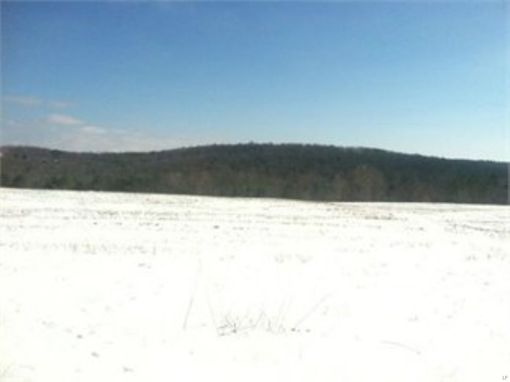 116 +/- Acres Land Auction : Benton : Luzerne County : Pennsylvania