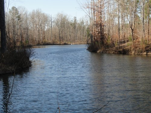 155 Ac. W Pond : Roberta : Crawford County : Georgia