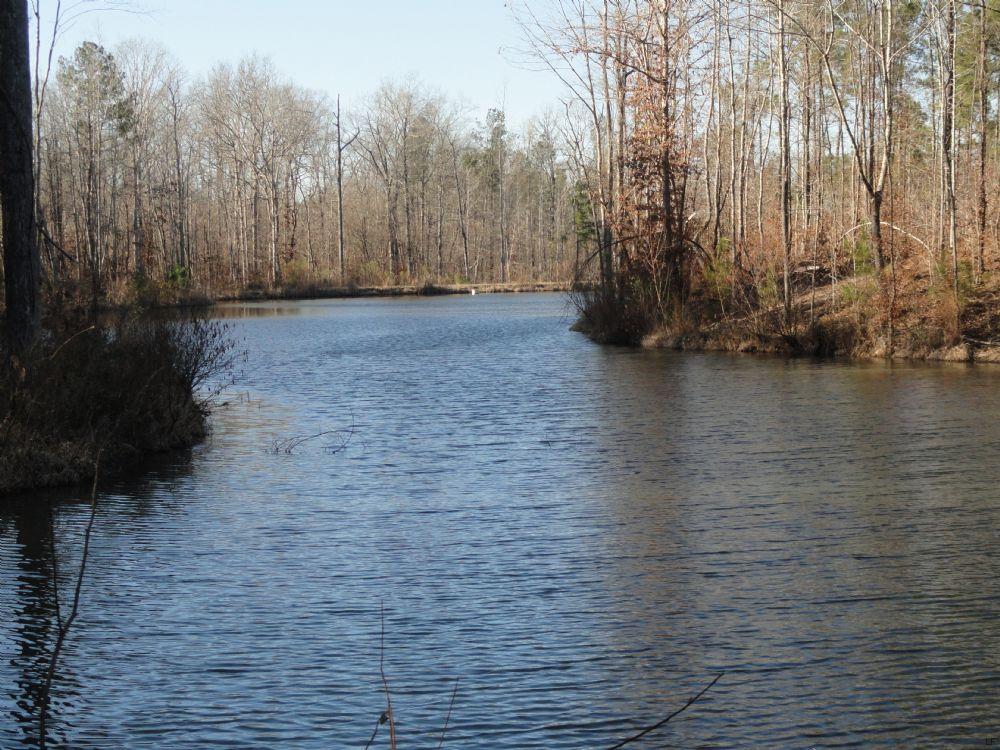 155 Ac. W Pond : Roberta : Crawford County : Georgia