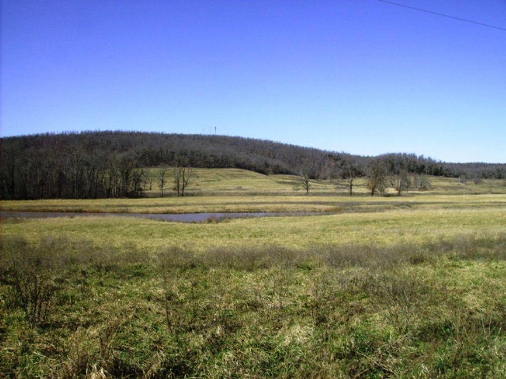 422 +/- Acre Cattle Farm : Marshall : Searcy County : Arkansas