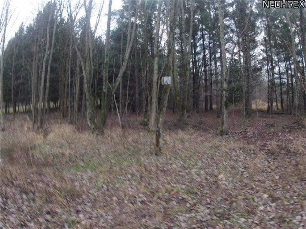 21+ Wooded Acres- Hunting Property : Farmington : Trumbull County : Ohio