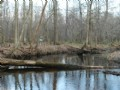 Ohoopee River Front - $1450 / Ac