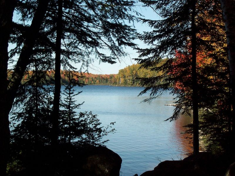 Lot 23 E Fence Lake Rd  Mls#1070809 : Michigamme : Baraga County : Michigan