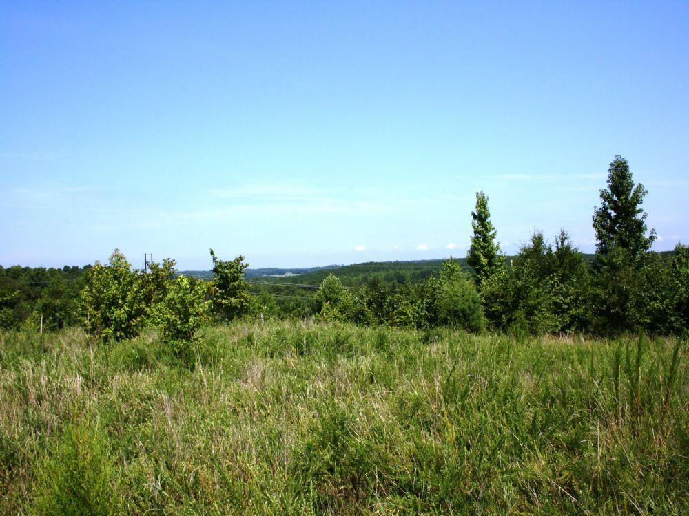 Mountain Creek Tract C : Anderson : Anderson County : South Carolina
