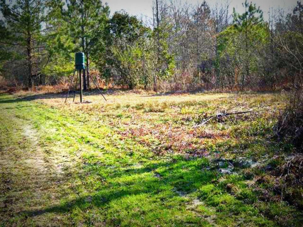 Williams Tract : Bartow : Johnson County : Georgia