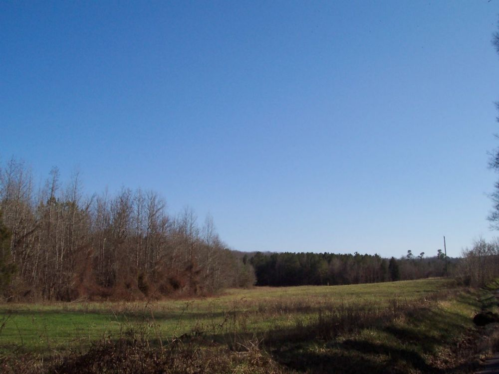 37.63 Acres Wooded & Pasture (3) : Adairsville : Bartow County : Georgia