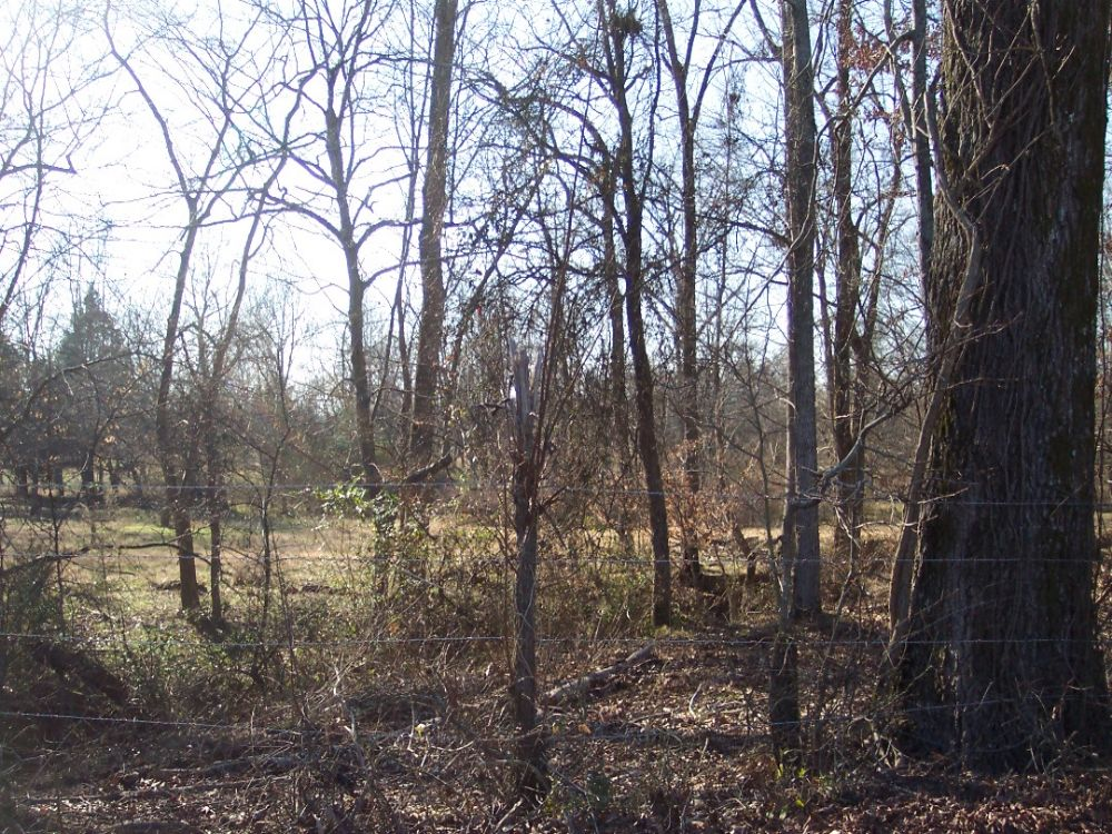 43.77 Ac. Mostly Wooded, Creek (1) : Adairsville : Bartow County : Georgia