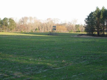 85 Acres With Pond : Swainsboro : Emanuel County : Georgia
