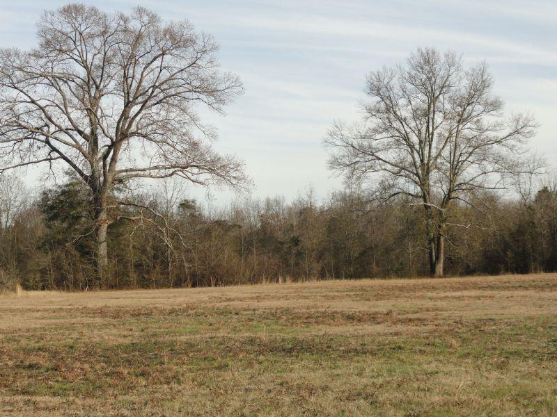 6.27 Acres Near Wr : Byron : Peach County : Georgia