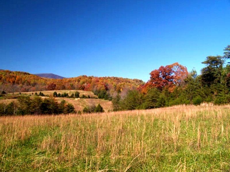 Build Your Ideal Farm : Roseland : Nelson County : Virginia
