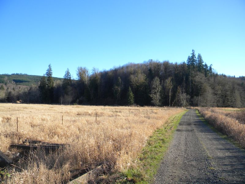 Big Property At A Small Price : Mccleary : Grays Harbor County : Washington
