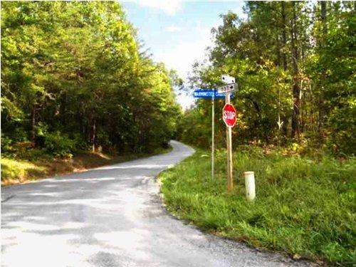 Near Yogaville : Buckingham : Virginia