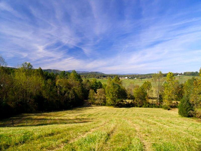 Rolling Farmland : Madison : Madison County : Virginia