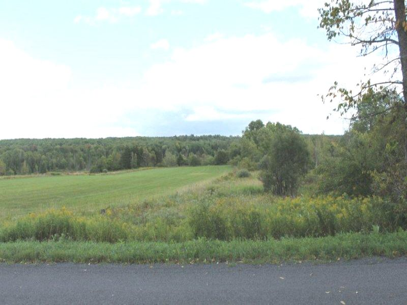 27 Acres Woods Meadows Stream : Boonville : Oneida County : New York