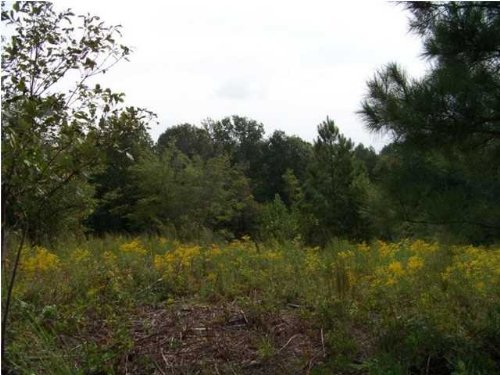 5.93+/- Acres Owner Financing : South Pittsburg : Marion County : Tennessee