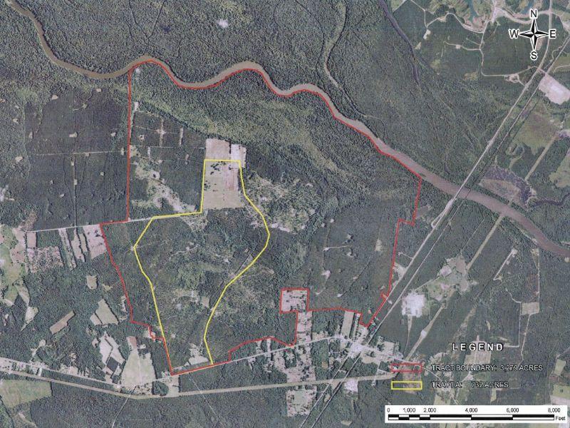 Ballsdam Plantation : Jamestown : Berkeley County : South Carolina