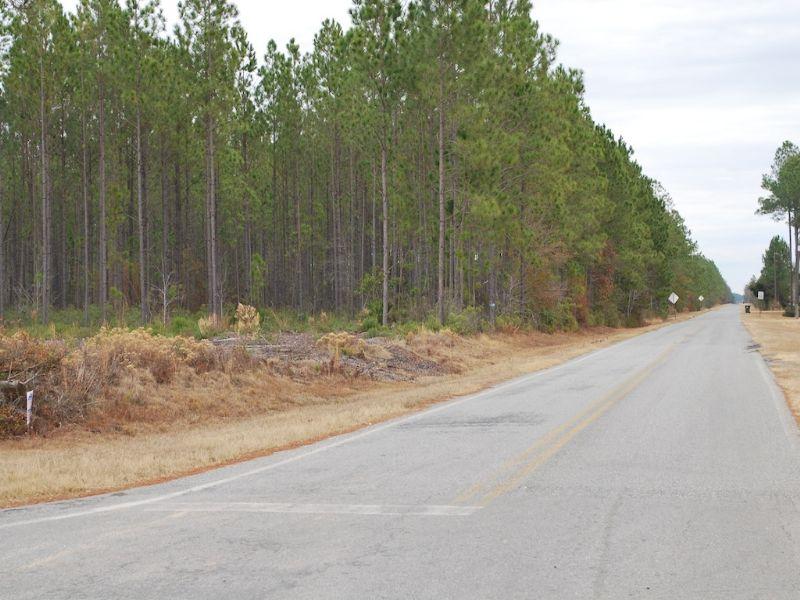 Satilla Church Road Tract 1 : Baxley : Appling County : Georgia