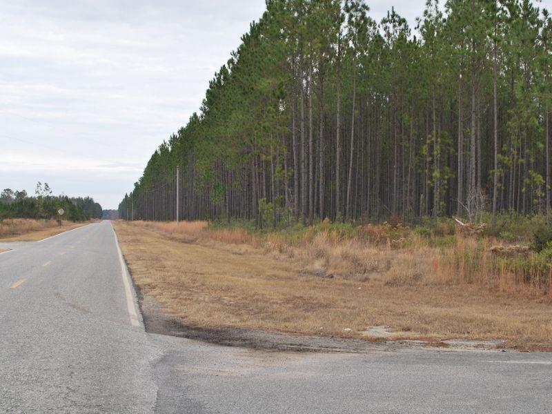 Satilla Church Road Tract 4 : Baxley : Appling County : Georgia