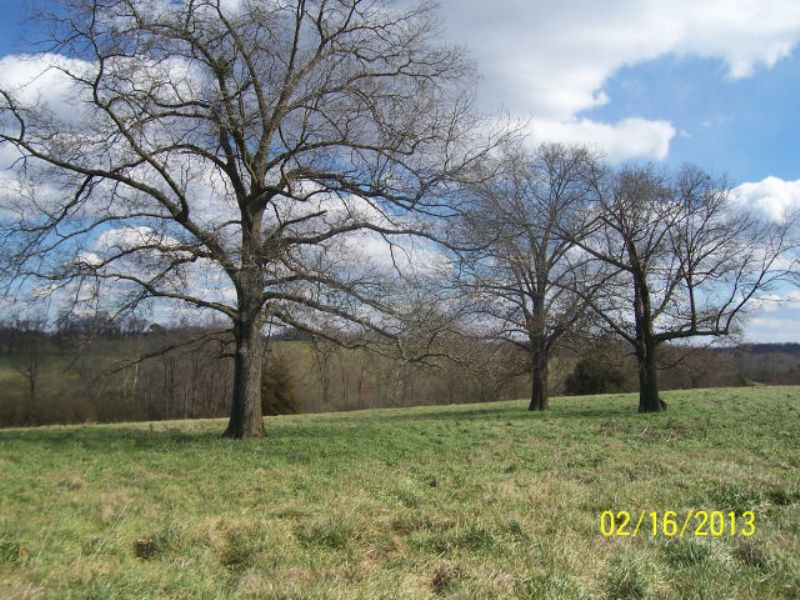 Pasture / Farmland : Gainesville : Hall County : Georgia