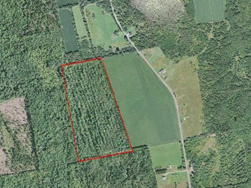 Large Bradford Parcel : Bradford : Penobscot County : Maine